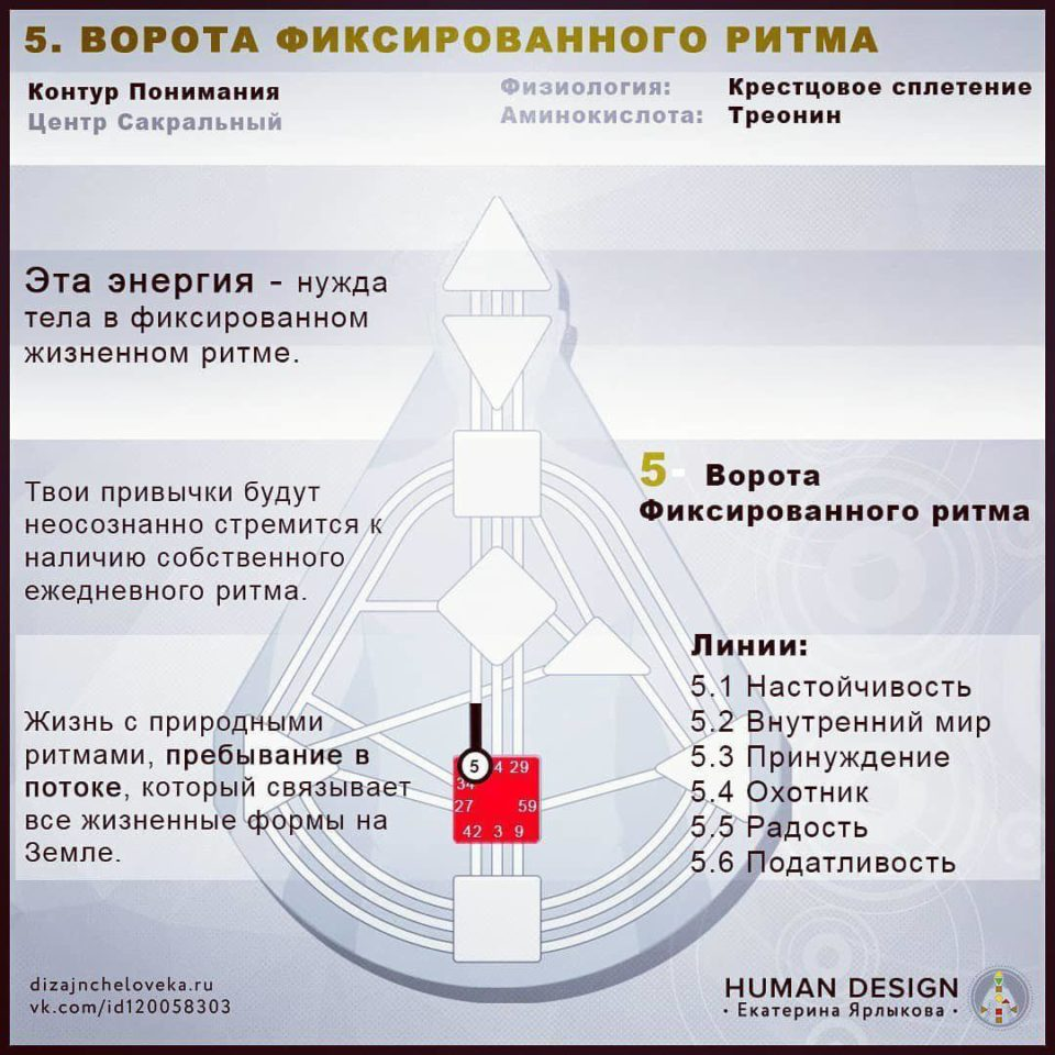 5 ворота дизайн человека