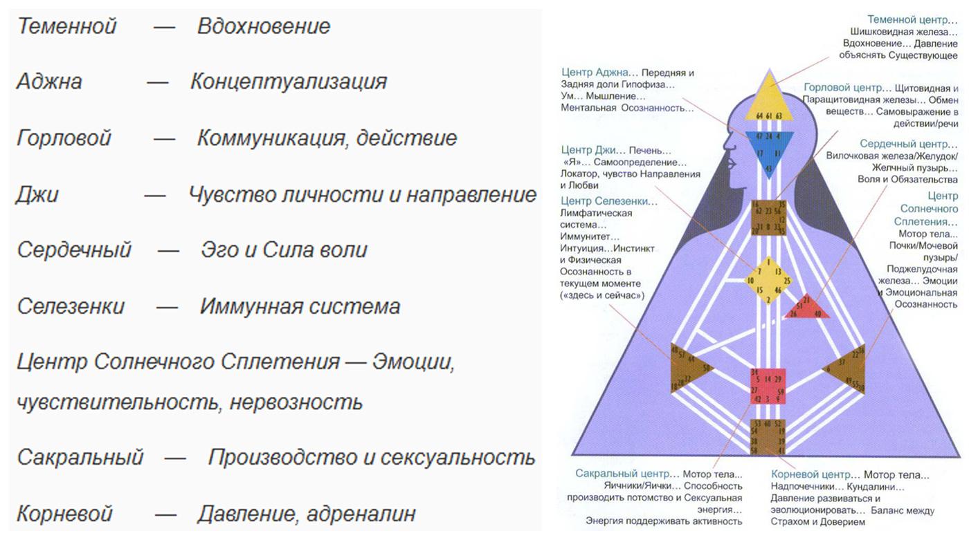 Дизайн человека рейв чарт