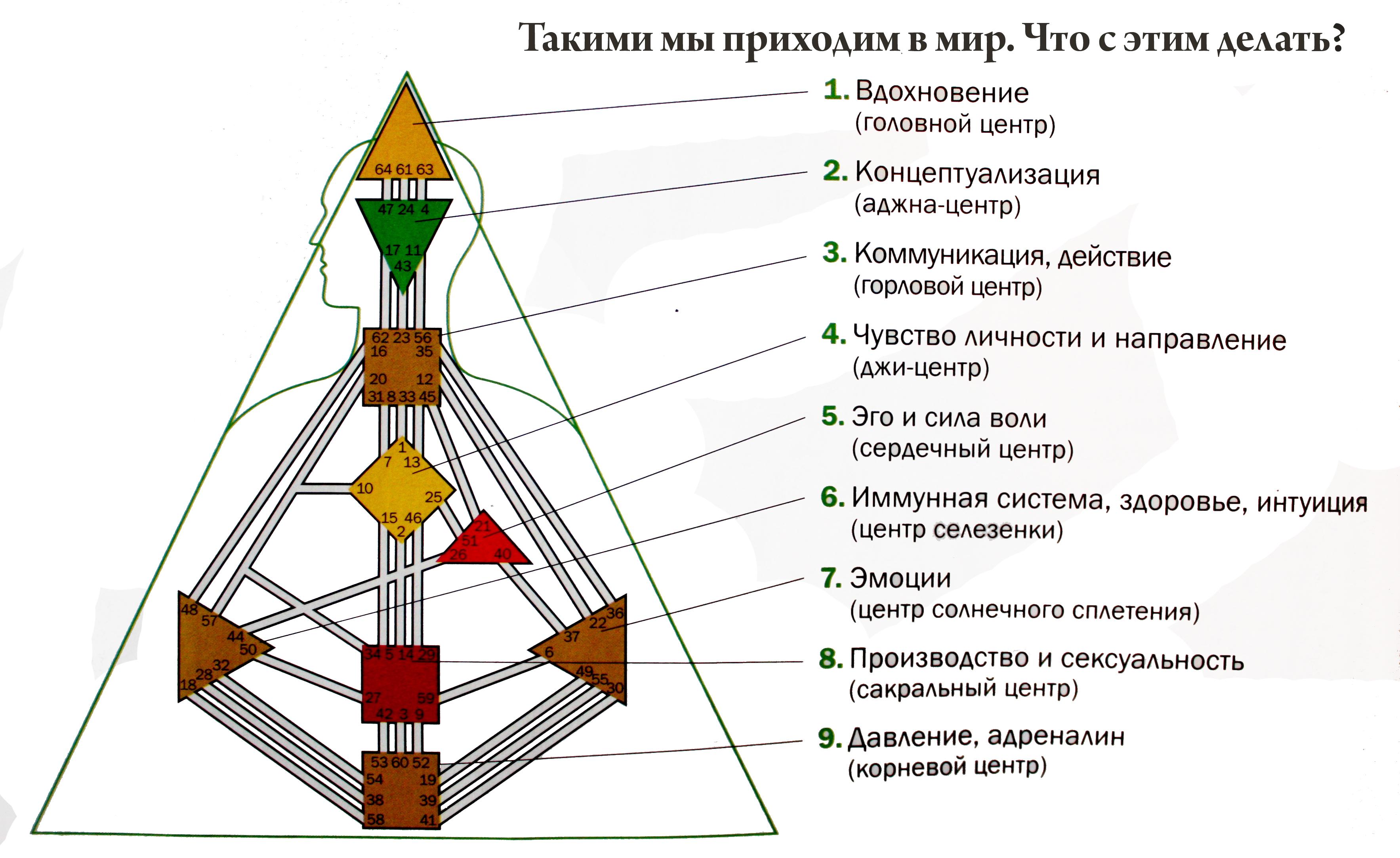dizajn-cheloveka-1