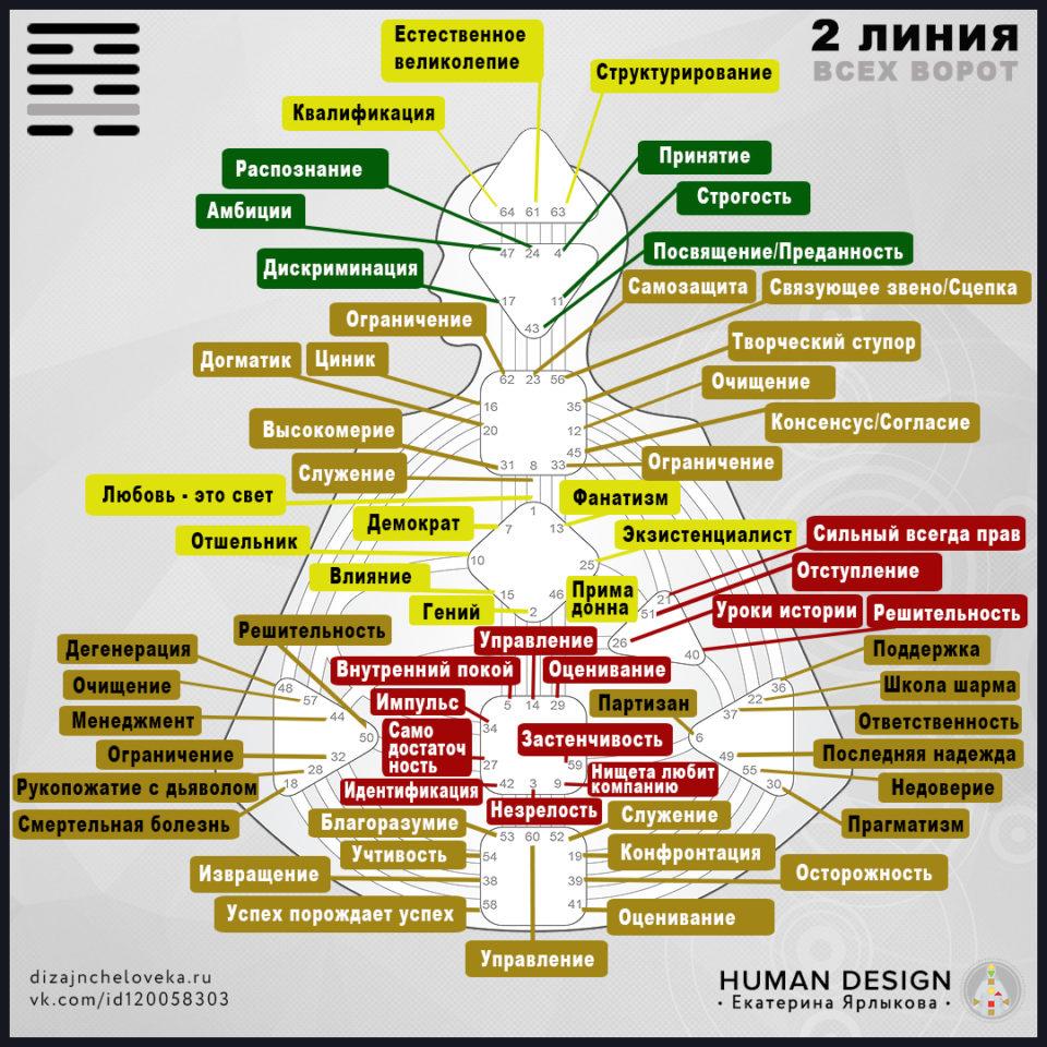 Гексаграмма 2 линия Дизайн Человека-Отшельник