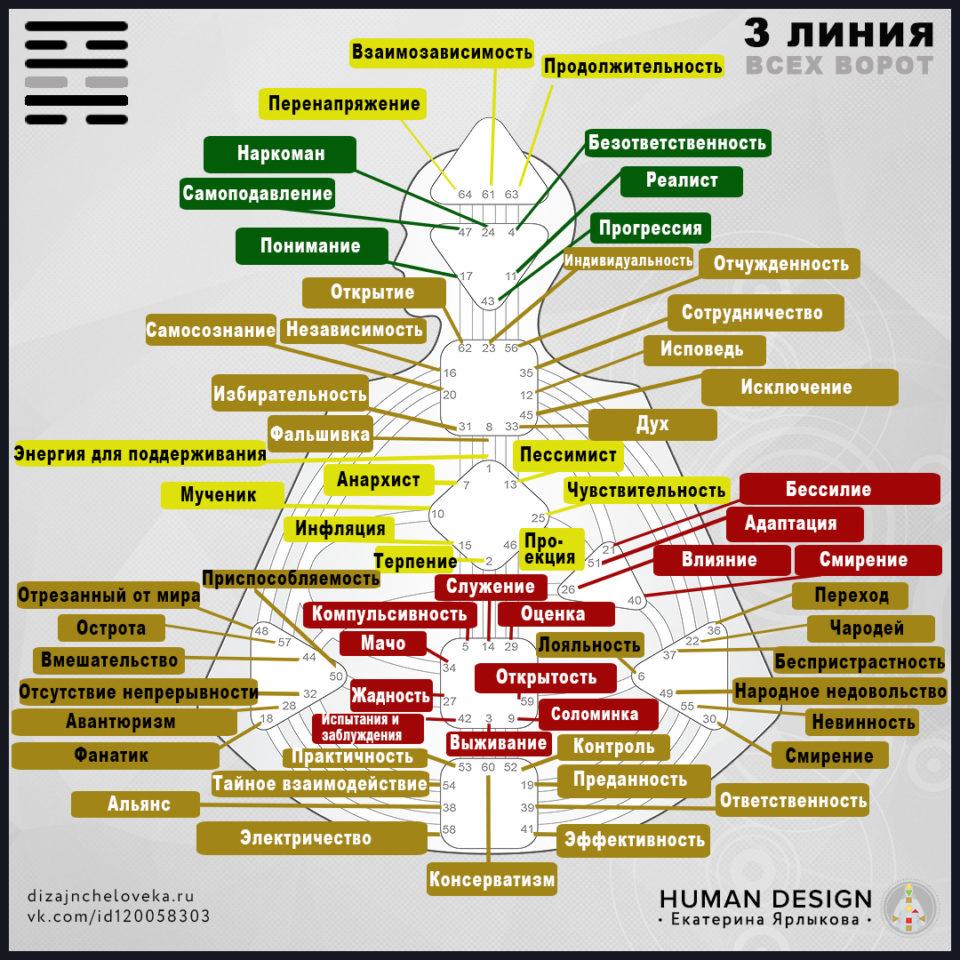 3-linija-dizajn-cheloveka