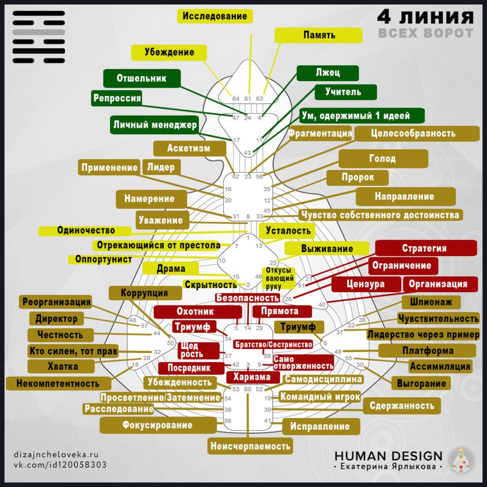 4-linija-dizajn-cheloveka