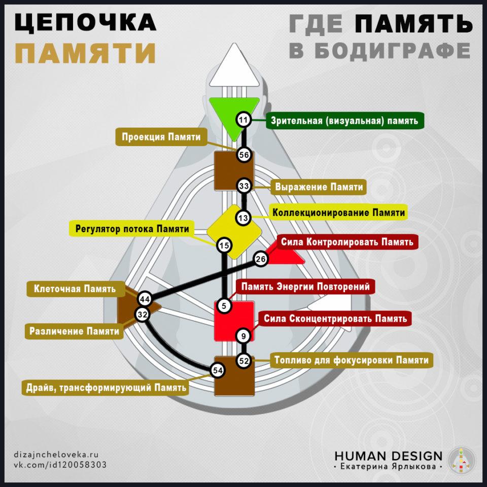 pamjat-v-bodigrafe-dizajna-cheloveka