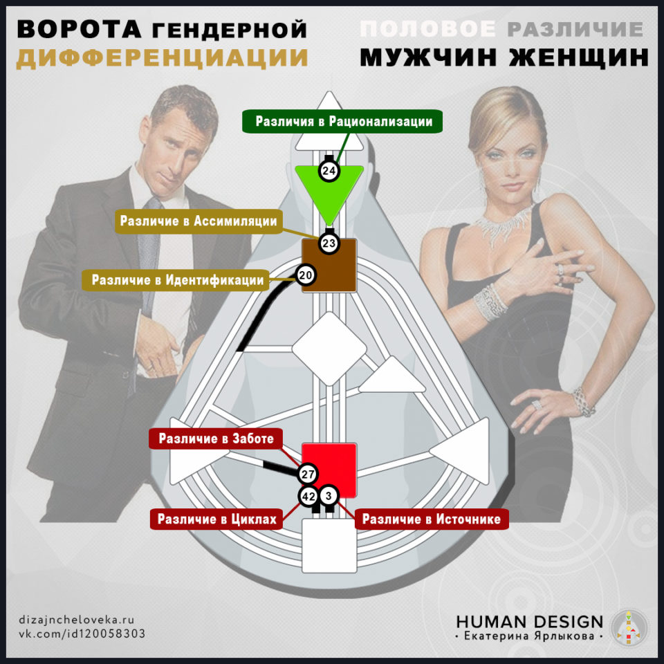 vorota-polovogo-razlichija-muzhchin-i-zhenshhin-v-dizajne-cheloveka