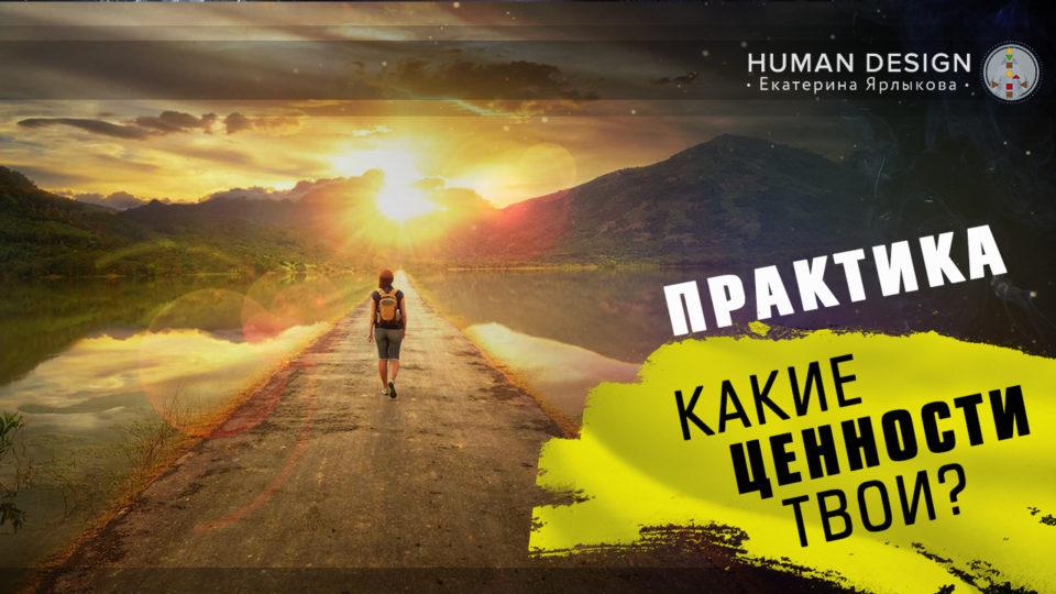 Human Design — «Дизайн Человека» Анализ Ценностей Целей Желаний ЦЕНТРЫ Джи и Эго