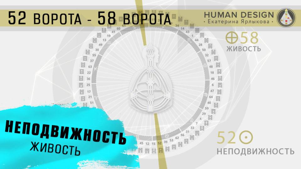 ⭐️⭐️⭐️⭐️⭐️ 26, 27, 28, 29, 30 Июня, а также 01 Июля Транзит Планет Online. Транзит Планет на Сегодня 26.06 — 01.07 (Июнь-Июль). Human Design — Дизайн Человека. Солнце в 52 воротах - Земля в 58 воротах ☼ (52) - ⊕ (58).