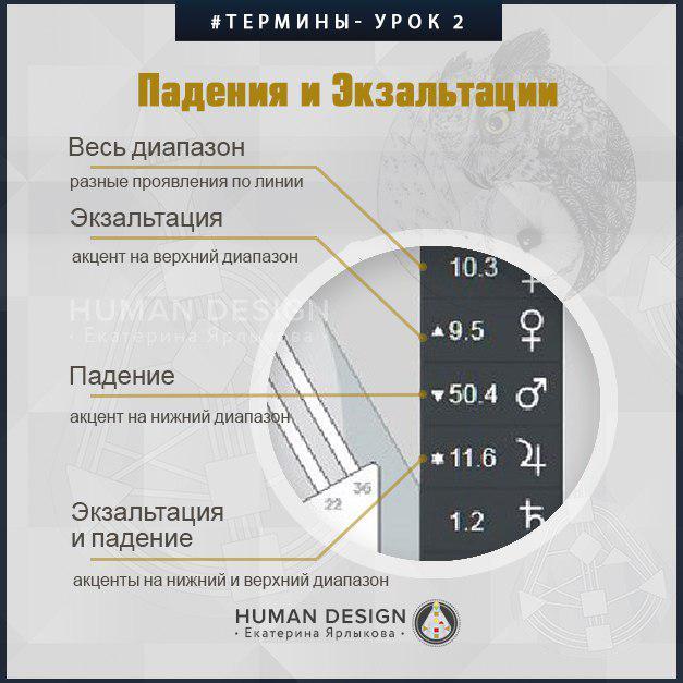 Human Design — Дизайн Человека — Вводный Бесплатный Курс «Human Design» (Дизайн Человека) — Екатерина Ярлыкова. День 2