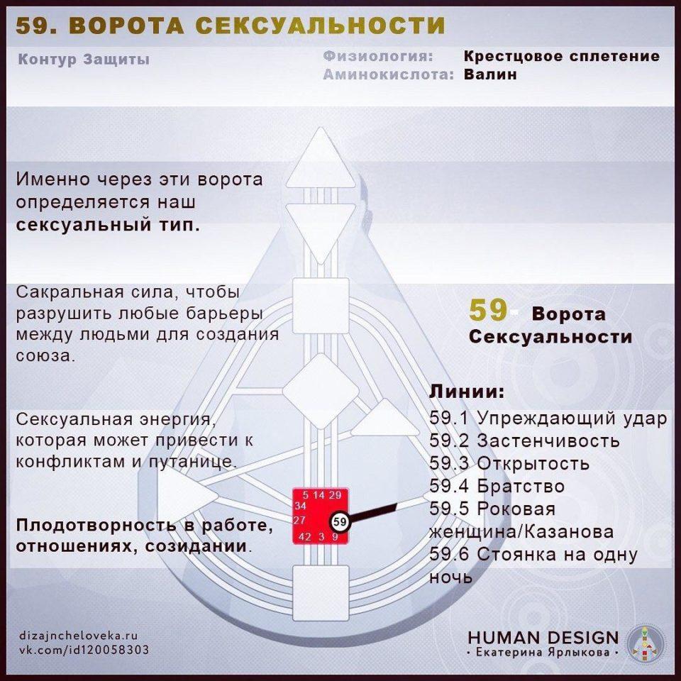 59 Ворота Human Design — ВОРОТА СЕКСУАЛЬНОСТИ (Дизайн Человека)