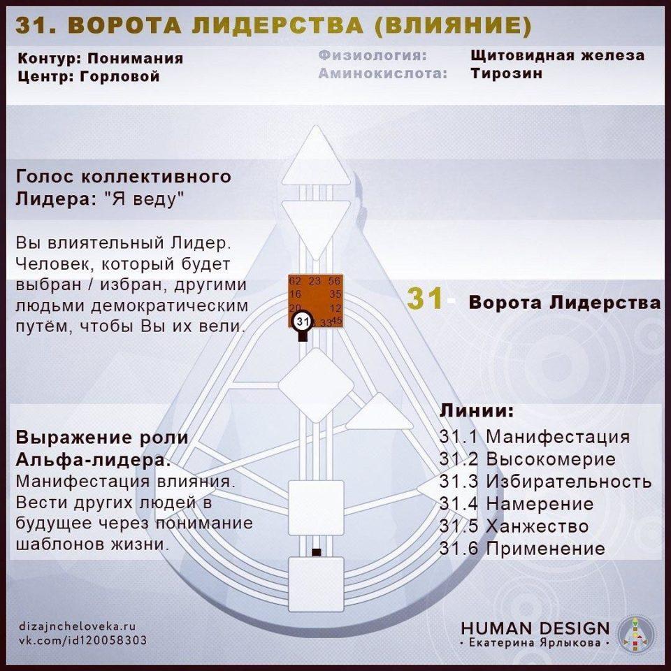 31 Ворота Human Design — ВОРОТА ЛИДЕРСТВА (ВЛИЯНИЕ) Дизайна Человека