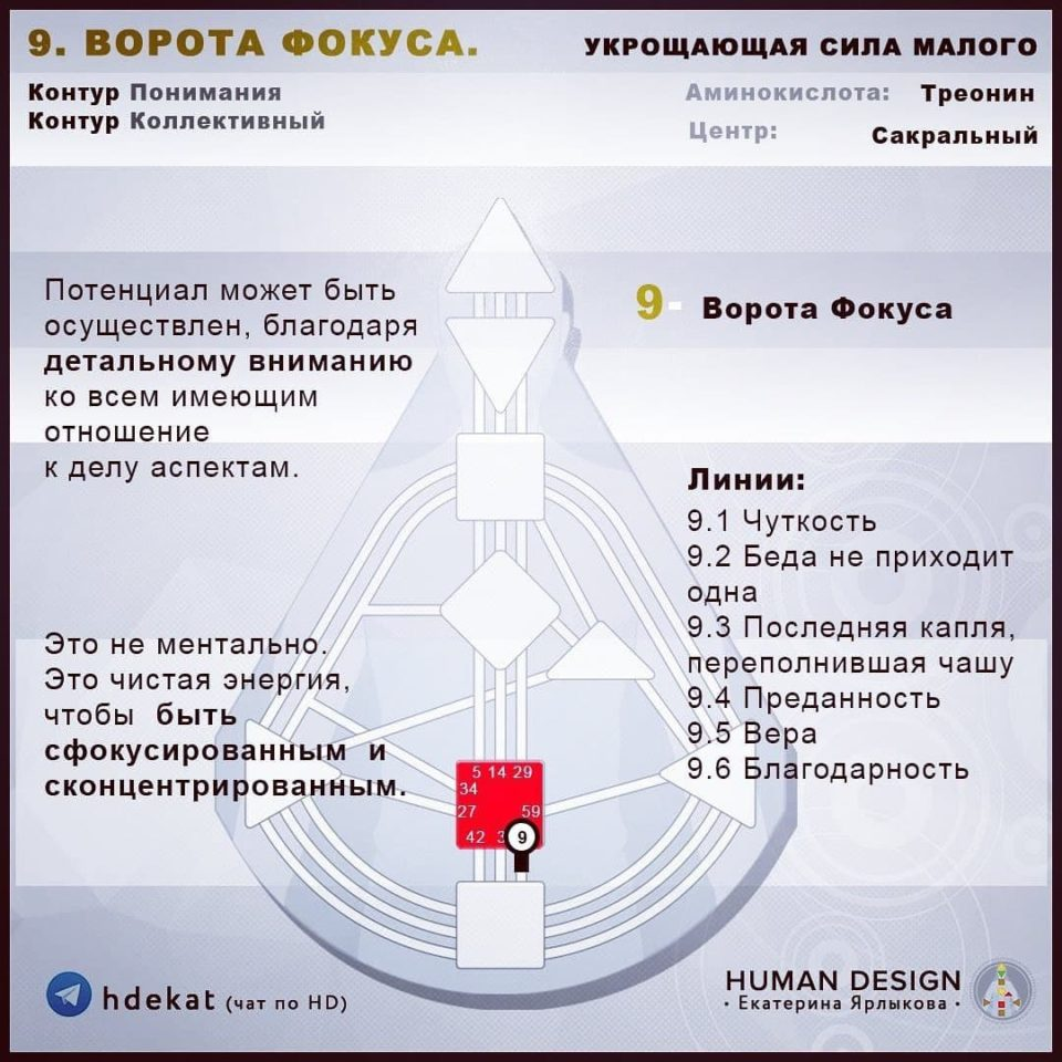 9 Ворота в Дизайне Человека. 9 ВОРОТА ФОКУСА «Укрощающая Сила Малого» — Human Design