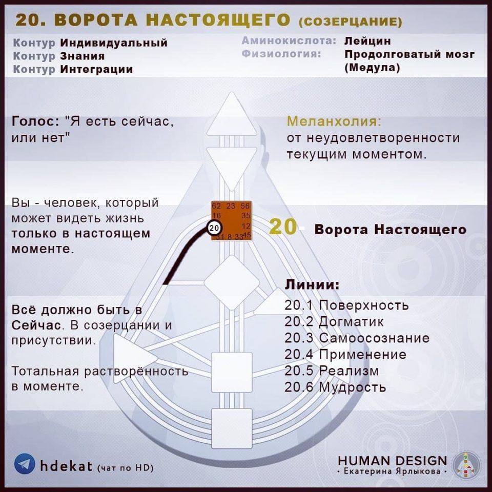 20 Ворота в Дизайне Человека. 20 ВОРОТА НАСТОЯЩЕГО «СОЗЕРЦАНИЕ» — Human Design