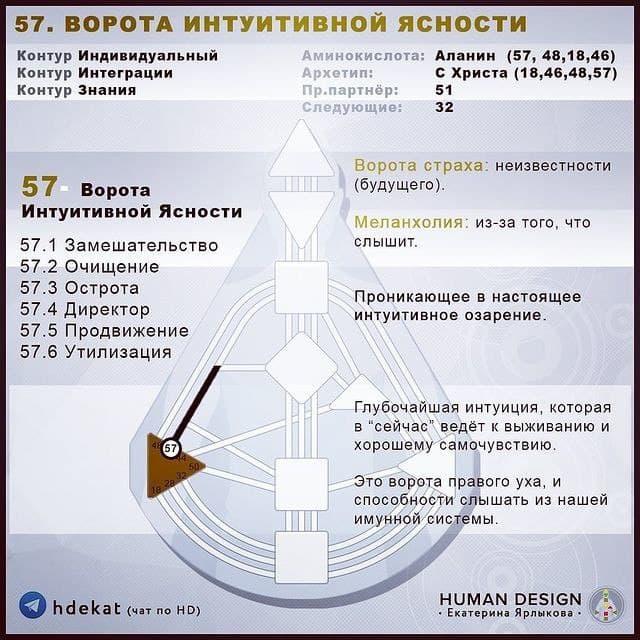 57. ВОРОТА В ДИЗАЙНЕ ЧЕЛОВЕКА. Ворота 57 Human Design (Дизайн Человека). 57 Ворота Интуитивной Ясности. (Шпаргалка).