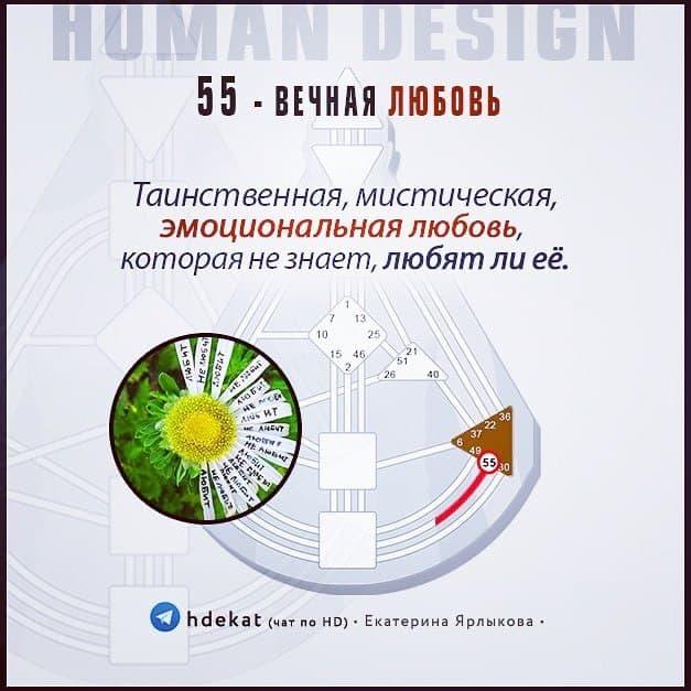 55. Ворота Любви в Дизайне Человека. 55 ВОРОТА (Human Design) — ВЕЧНАЯ ЛЮБОВЬ